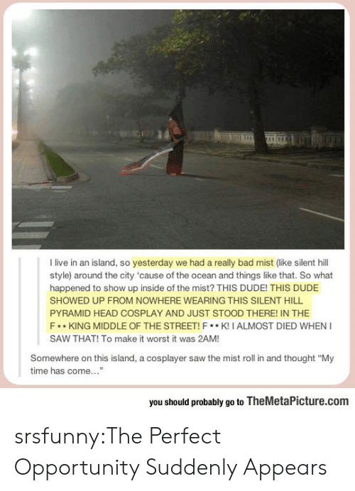 """cosplayer: I live in an island, so yesterday we had a really bad mist (like silent hill  style) around the city 'cause of the ocean and things like that. So what  happened to show up inside of the mist? THIS DUDE! THIS DUDE  SHOWED UP FROM NOWHERE WEARING THIS SILENT HILL  PYRAMID HEAD COSPLAY AND JUST STOOD THERE! IN THE  F *KING MIDDLE OF THE STREET!F*K! I ALMOST DIED WHEN I  SAW THAT! To make it worst it was 2AM!  Somewhere on this island, a cosplayer saw the mist roll in and thought """"My  time has come """"  you should probably go to TheMetaPicture.com srsfunny:The Perfect Opportunity Suddenly Appears"""