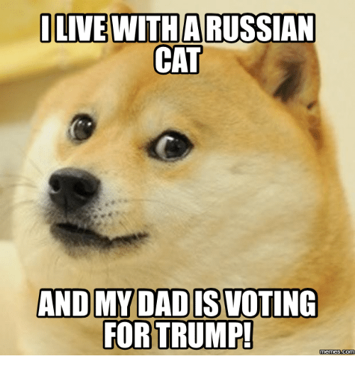 i live with arussian cat and my dadiswoting for trump 14019323 🇲🇽 25 best memes about trump cat meme trump cat memes