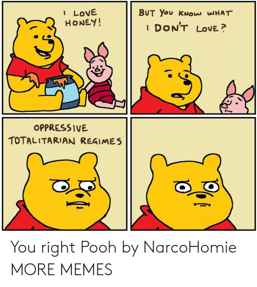 pooh: I LOVE  HONEY!  BUT You KNOW WHAT  DON'T  LOVE  1  OPPRESSIVE  TOTALITARIAN REGIMES You right Pooh by NarcoHomie MORE MEMES