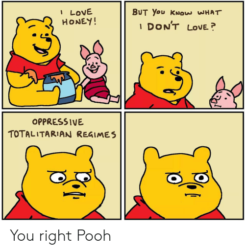 pooh: I LOVE  HONEY!  BUT You KNOW WHAT  DON'T  LOVE  1  OPPRESSIVE  TOTALITARIAN REGIMES You right Pooh