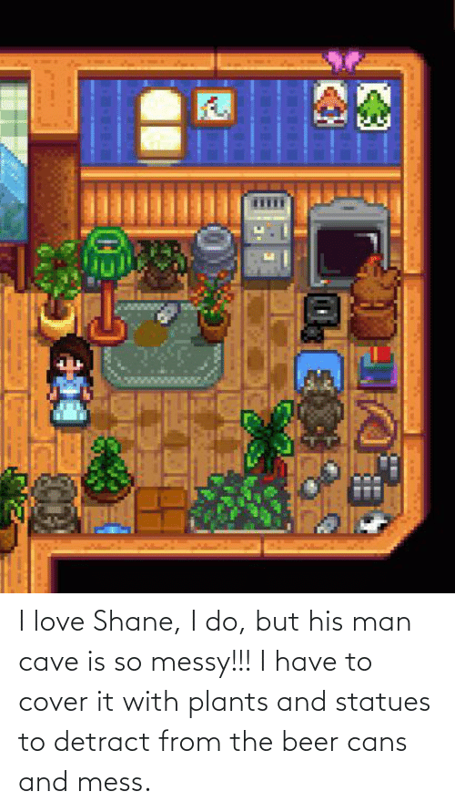 mess: I love Shane, I do, but his man cave is so messy!!! I have to cover it with plants and statues to detract from the beer cans and mess.