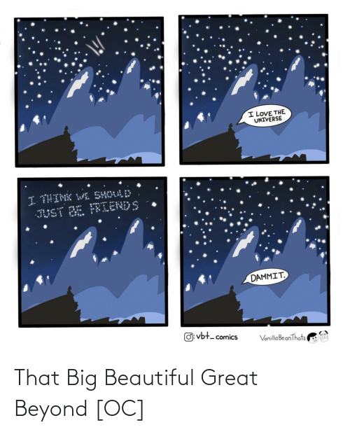 the universe: I LOVE THE  UNIVERSE  I THINK WL SHOULD  JUST BE FRIENDS  DAMMIT.  O: vbt- comics  Vanilla BeanThots That Big Beautiful Great Beyond [OC]
