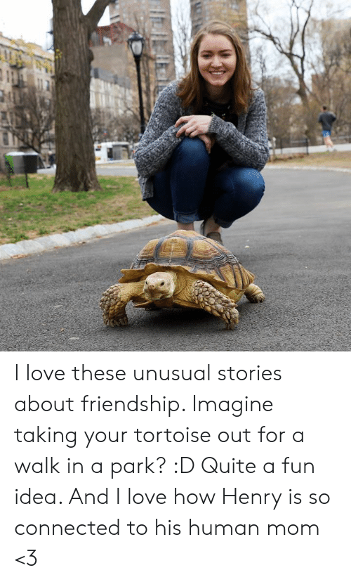 Love, Memes, and Connected: I love these unusual stories about friendship. Imagine taking your tortoise out for a walk in a park? :D Quite a fun idea. And I love how Henry is so connected to his human mom <3