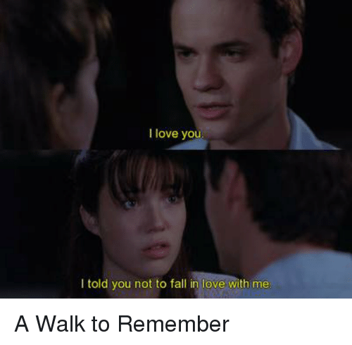 a walk to remember: I love yo  I told you not to fall in love with me A Walk to Remember