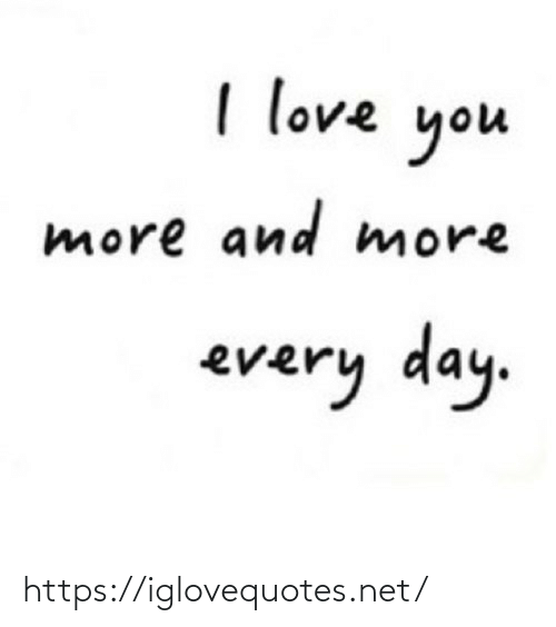 Love, I Love You, and Net: I love  you  more and more  every day. https://iglovequotes.net/