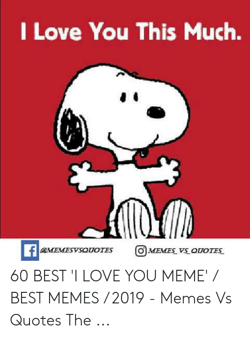 Love, Meme, and Memes: I Love You This Much.  O MEMES VS OUOTES  faMEMESVSOUOTES 60 BEST 'I LOVE YOU MEME' / BEST MEMES / 2019 - Memes Vs Quotes The ...
