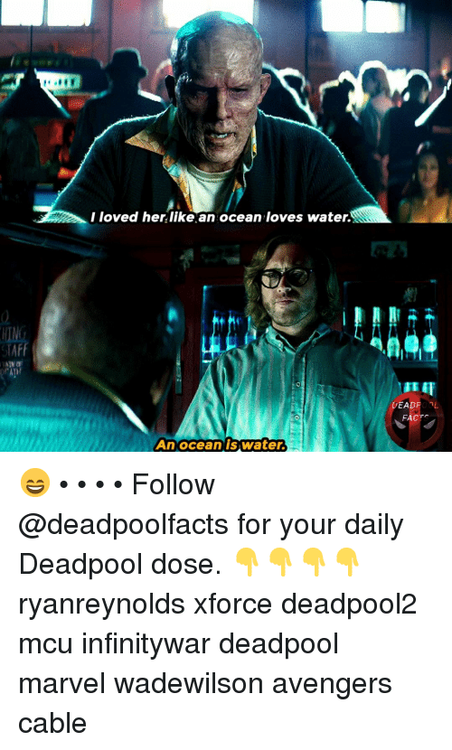 Memes, Deadpool, and Avengers: I loved her likean ocean loves water  DEADROOL  FACT  Anoceanis Water. 😄 • • • • Follow @deadpoolfacts for your daily Deadpool dose. 👇👇👇👇 ryanreynolds xforce deadpool2 mcu infinitywar deadpool marvel wadewilson avengers cable