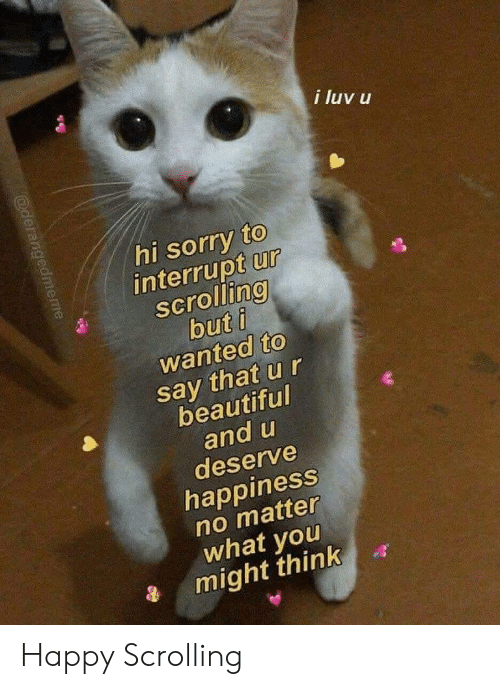luv: i luv u  hi sorry to  interrupt ur  scrolling  but i  wanted to  say that u r  beautiful  and u  deserve  happiness  no matter  what you  might think  @derangedmeme Happy Scrolling