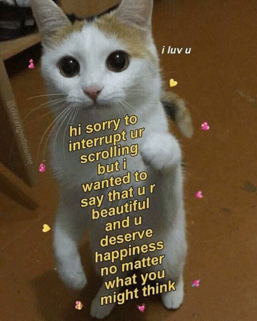 Beautiful, Sorry, and Happiness: i luv u  hi sorry to  interrupt ur  scrolling  but i  wanted to  say that ur  beautiful  and u  deserve  happiness  no matter  what you  a might think a