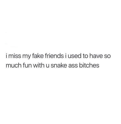 Ass, Fake, and Friends: i miss my fake friends i used to have so  much fun with u snake ass bitches