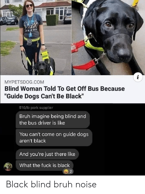 """Bruh, Dogs, and Reddit: i  MYPETSDOG.COM  Blind Woman Told To Get Off Bus Because  """"Guide Dogs Can't Be Black""""  $10/lb pork supplier  Bruh imagine being blind and  the bus driver is like  You can't come on guide dogs  aren't black  And you're just there like  What the fuck is black  2 Black blind bruh noise"""