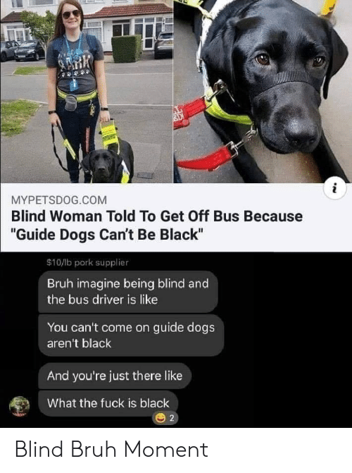 """Bruh, Dogs, and Black: i  MYPETSDOG.COM  Blind Woman Told To Get Off Bus Because  """"Guide Dogs Can't Be Black""""  $10/lb pork supplier  Bruh imagine being blind and  the bus driver is like  You can't come on guide dogs  aren't black  And you're just there like  What the fuck is black  2 Blind Bruh Moment"""