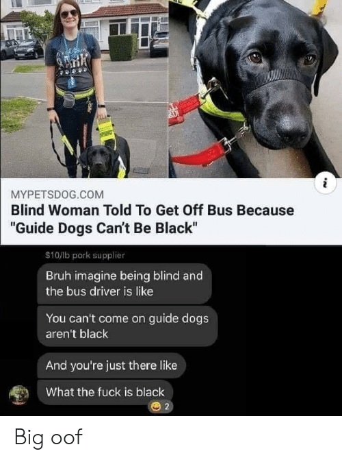 """Bruh, Dogs, and Reddit: i  MYPETSDOG.COM  Blind Woman Told To Get Off Bus Because  """"Guide Dogs Can't Be Black""""  $10/b pork supplier  Bruh imagine being blind and  the bus driver is like  You can't come on guide dogs  aren't black  And you're just there like  What the fuck is black  O 2 Big oof"""