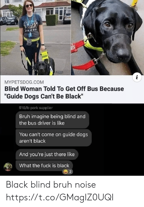 """Bruh, Dogs, and Black: i  MYPETSDOG.COM  Blind Woman Told To Get Off Bus Because  """"Guide Dogs Can't Be Black""""  $10/lb pork supplier  Bruh imagine being blind and  the bus driver is like  You can't come on guide dogs  aren't black  And you're just there like  What the fuck is black  2 Black blind bruh noise https://t.co/GMagIZ0UQI"""