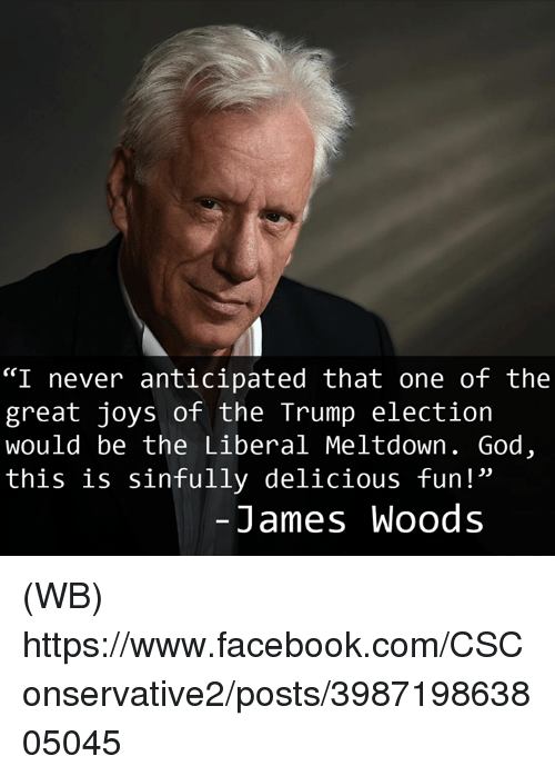 "Facebook, God, and Memes: ""I never anticipated that one of the  great joys of the Trump election  would be the Liberal Meltdown. God  this is sinfully delicious fun!""  James Woods (WB)  https://www.facebook.com/CSConservative2/posts/398719863805045"
