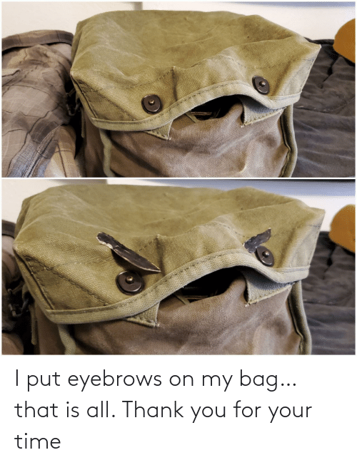 thank you for your: I put eyebrows on my bag… that is all. Thank you for your time