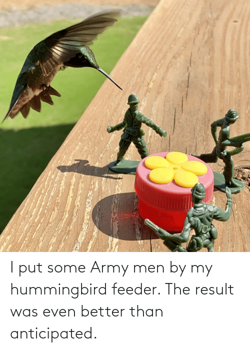 Was: I put some Army men by my hummingbird feeder. The result was even better than anticipated.