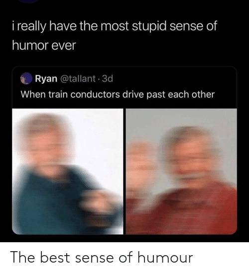 Reddit, Best, and Drive: i really have the most stupid sense of  humor ever  Ryan @tallant 3d  When train conductors drive past each other The best sense of humour