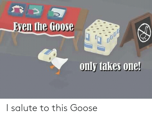 Salute: I salute to this Goose