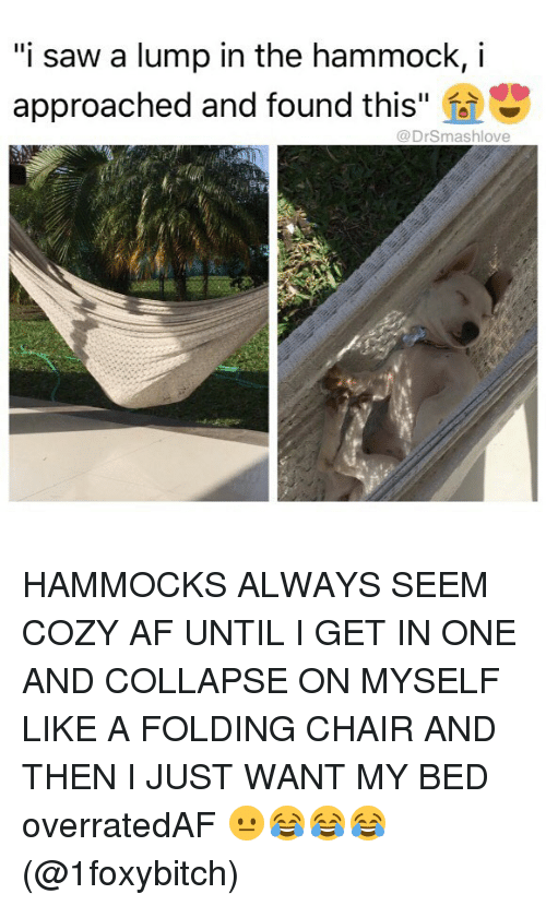 """Hammocking: """"i saw a lump in the hammock, i  approached and found this  @DrSmashlove HAMMOCKS ALWAYS SEEM COZY AF UNTIL I GET IN ONE AND COLLAPSE ON MYSELF LIKE A FOLDING CHAIR AND THEN I JUST WANT MY BED overratedAF 😐😂😂😂 (@1foxybitch)"""