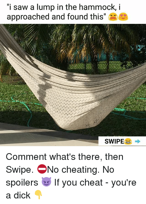 """Hammocking: """"i saw a lump in the hammock, i  approached and found this""""e Comment what's there, then Swipe. ⛔No cheating. No spoilers 😈 If you cheat - you're a dick 👇"""