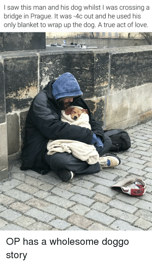 Love, Saw, and True: I saw this man and his dog whilst I was crossinga  bridge in Prague. It was -4c out and he used his  only blanket to wrap up the dog. A true act of love OP has a wholesome doggo story