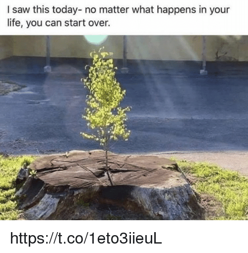 Life, Memes, and Saw: I saw this today- no matter what happens in your  life, you can start over. https://t.co/1eto3iieuL