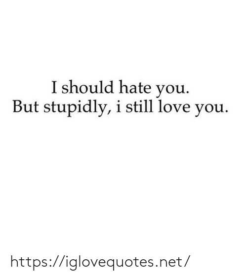 hate: I should hate you.  But stupidly, i still love you. https://iglovequotes.net/