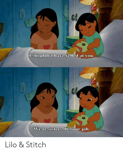 Lilo & Stitch: I shouldn't have yelled at you.  We're sisters. It's our  job. Lilo & Stitch