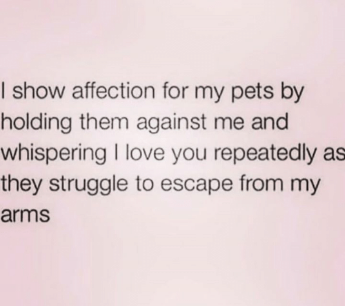 against me: I show affection for my pets by  holding them against me and  whispering I love you repeatedly as  they struggle to escape from my  arms