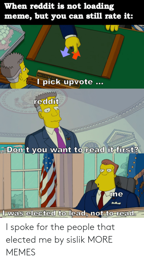 Elected: I spoke for the people that elected me by sislik MORE MEMES