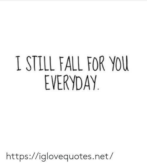 Fall, Net, and You: I STILL FALL FOR YOU  EVERYDAY https://iglovequotes.net/