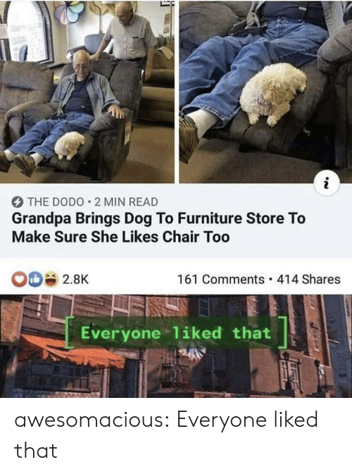 Tumblr, Grandpa, and Blog: i  THE DODO 2 MIN READ  Grandpa Brings Dog To Furniture Store To  Make Sure She Likes Chair Too  161 Comments 414 Shares  2.8K  Everyone 1iked that awesomacious:  Everyone liked that