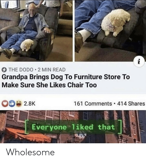 Reddit, Grandpa, and Furniture: i  THE DODO 2 MIN READ  Grandpa Brings Dog To Furniture Store To  Make Sure She Likes Chair Too  161 Comments 414 Shares  2.8K  Everyone 1iked that Wholesome