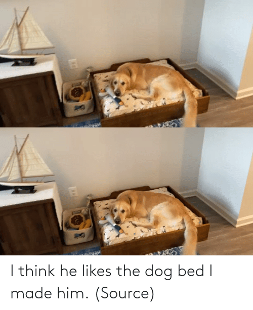 i think: I think he likes the dog bed I made him. (Source)