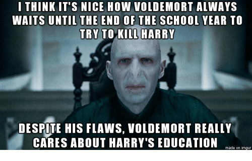 Always Waiting: I THINK IT'S NICE HOW VOLDEMORT ALWAYS  WAITS UNTIL THE END OF THE SCHOOL YEAR TO  TRY TO KILL HARRY  DESPITE HIS FLAws, VOLDEMORT REALLY  CARES ABOUT HARRY'S EDUCATION  made on imgur