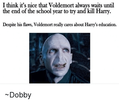 Always Waiting: I think it's nice that Voldemort always waits until  the end of the school year to try and kill Harry.  Despite his flaws, Voldemort really cares about Harry's education. ~Dobby
