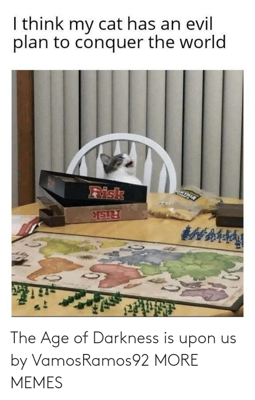 Age: I think my cat has an evil  plan to conquer the world  Risk  Risk The Age of Darkness is upon us by VamosRamos92 MORE MEMES