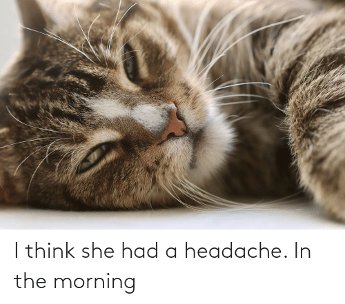 headache: I think she had a headache. In the morning
