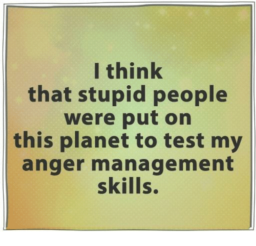 Anger Management: I think  that stupid people  were put on  this planet to test my  anger management  skills.