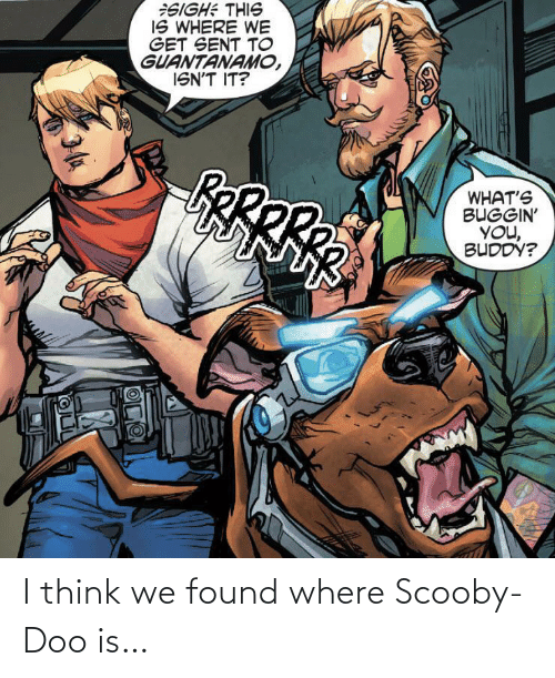 i think: I think we found where Scooby-Doo is…