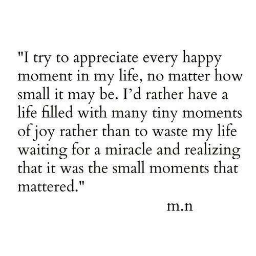 "joy: ""I try to appreciate every happy  moment in my life, no matter how  small it may be. I'd rather have  life filled with many tiny moments  of joy rather than to waste my life  waiting for a miracle and realizing  that it was the small moments that  mattered.""  m.n"