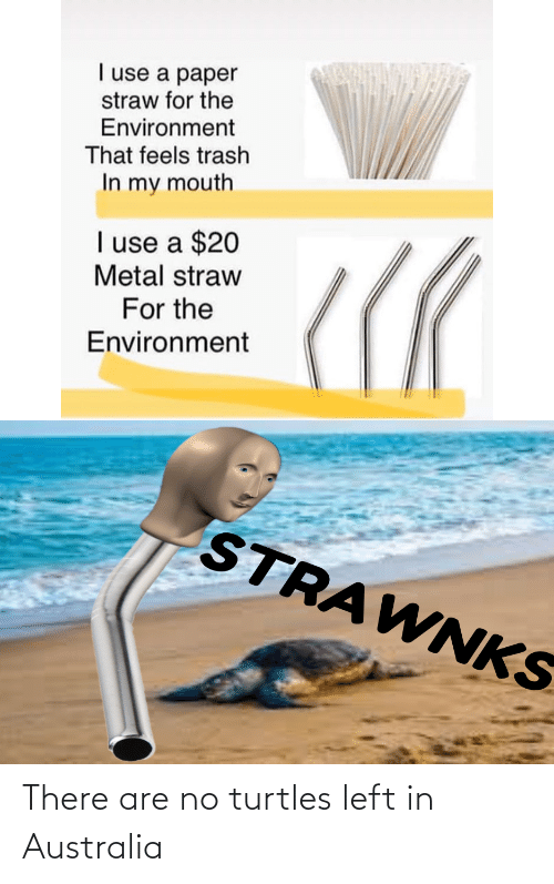 turtles: I use a paper  straw for the  Environment  That feels trash  In my mouth  I use a $20  Metal straw  For the  Environment  STRAWNKS There are no turtles left in Australia