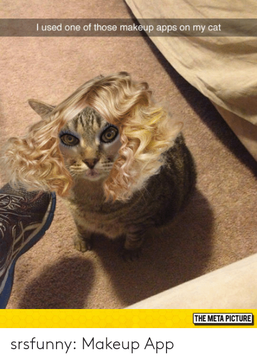 Makeup, Tumblr, and Apps: I used one of those makeup apps on my cat  THE META PICTURE srsfunny:  Makeup App