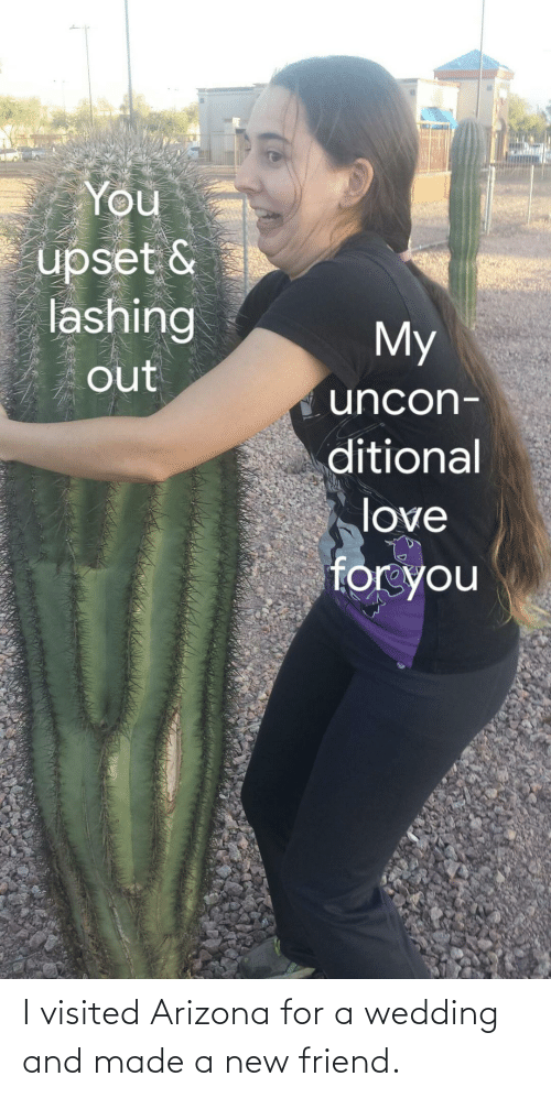 Arizona: I visited Arizona for a wedding and made a new friend.