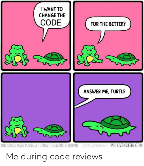 Turtle, Change, and Reviews: I WANT TO  CHANGE THE  CODE  FOR THE BETTER?  ANSWER ME, TURTLE  @MrLovenstein MRLOVENSTEIN.COM  THIS COMIC MADE POSSIBLE THANKS TO ELIZABETH SCHMID Me during code reviews