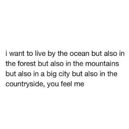 the forest: i want to live by the ocean but also in  the forest but also in the mountains  but also in a big city but also in the  countryside, you feel me