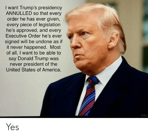 America, Donald Trump, and Trump: I want Trump's presidency  ANNULLED so that every  order he has ever given,  every piece of legislation  he's approved, and every  Executive Order he's ever  signed will be undone as if  it never happened. Most  of all, I want to be able to  say Donald Trump was  never president of the  United States of America.  Kall Yes