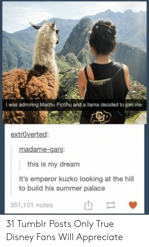 emperor: I was admiring Machu Picchu and a llama decided to join me.  extroverted:  madame-ganj:  this is my dream  It's emperor kuzko looking at the hill  to build his summer palace  351,101 notes  t1 31 Tumblr Posts Only True Disney Fans Will Appreciate