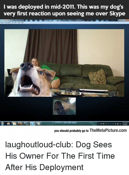 Skype: I was deployed in mid-2011. This was my dog's  very first reaction upon seeing me over Skype  you should probably go to TheMetaPicture.com laughoutloud-club:  Dog Sees His Owner For The First Time After His Deployment